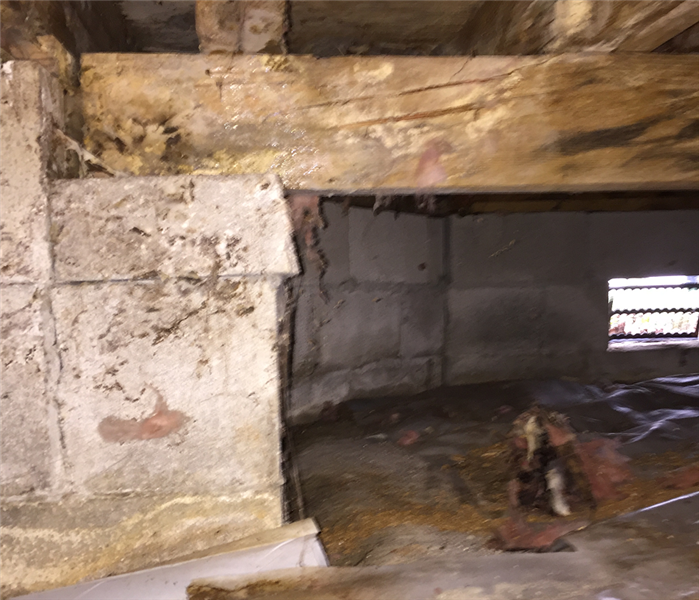 Mold in Crawlspace in Chesapeake Before
