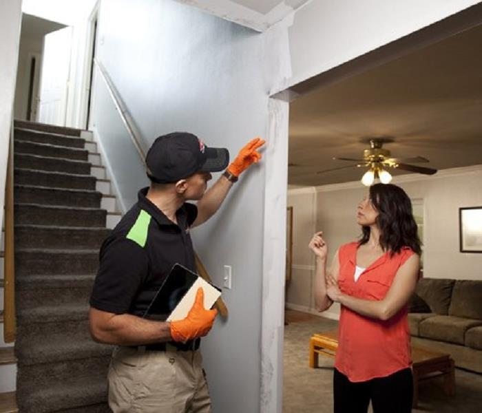 Mold Remediation Chesapeake Mold Facts