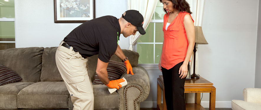 Chesapeake, VA carpet upholstery cleaning